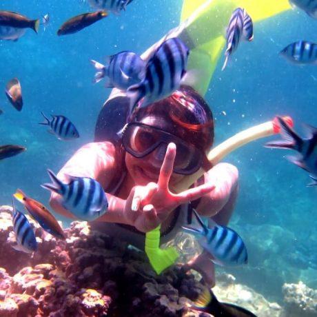 karimunjawa snorkeling 1200
